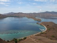 Komodo-flores_diving_2015